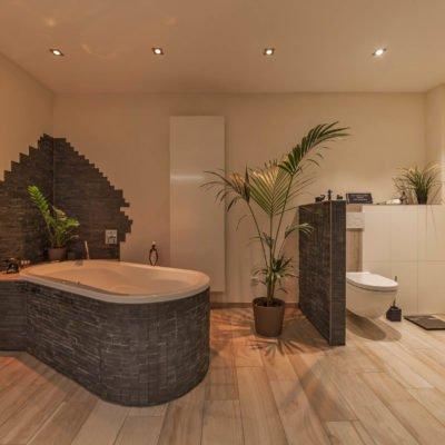 Bad-Referenzbad-die-Regenwald-Dusche-Badewanne-Dusche-WC