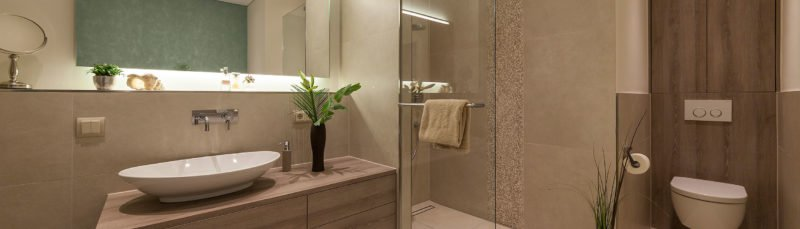 gemütliches_luxusbad_dusche